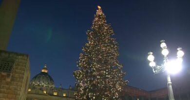 Inaugurazione Presepe 2019 a Piazza San Pietro, acceso l'albero di Natale.