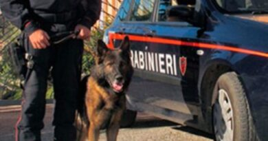 Roma.Tor Bella Monaca – In manette 7 pusher e sequestrate 400 dosi di droga.