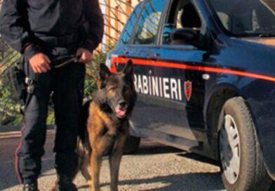 Roma.Tor Bella Monaca – In manette 7 pusher e sequestrate 400 dosi di droga.